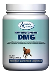 Dimethyl Glycine (DMG)